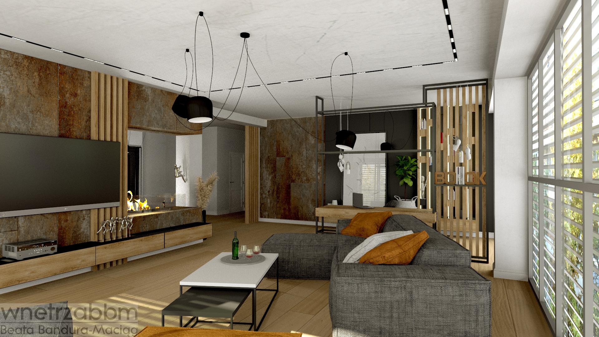 Loft w łódzkim apartamentowcu